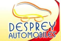 Logo Desprey 158x100_2